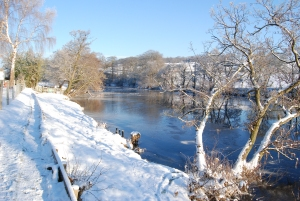 The River Wharfe in winter